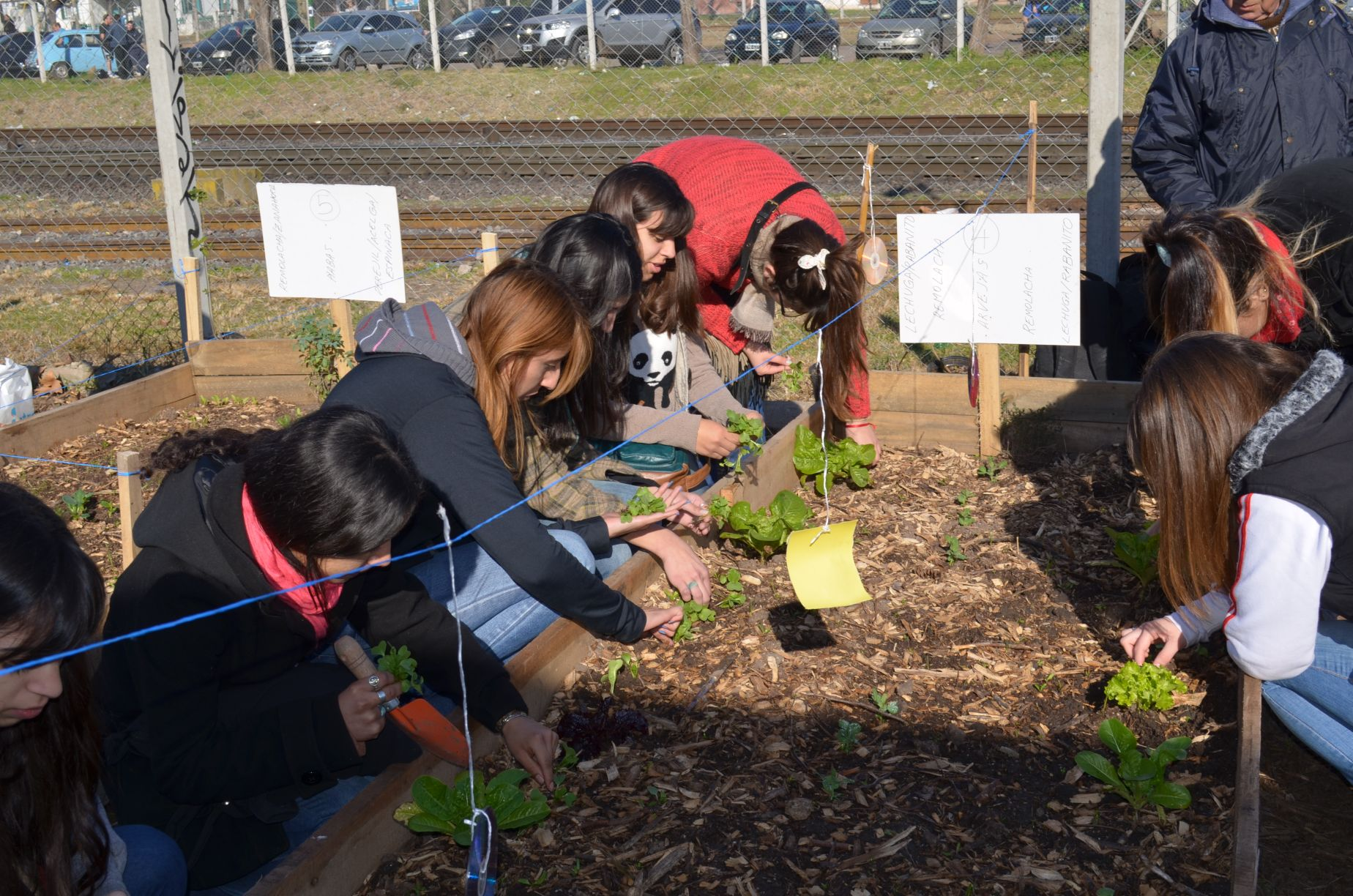 Tercera Jornada de Huerta Agroecológica
