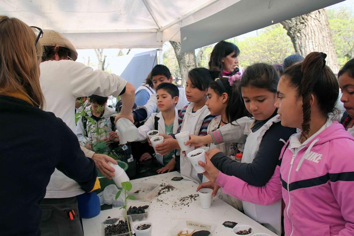 Los chicos realizaron muestras de germinación de distintas plantas