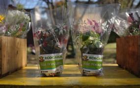 """San Miguel realizó un Eco-Canje en el Día de la Primavera con el lema """"5 reciclables por una planta"""""""