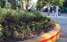 Esto también forma parte del embellecimiento de los espacios públicos