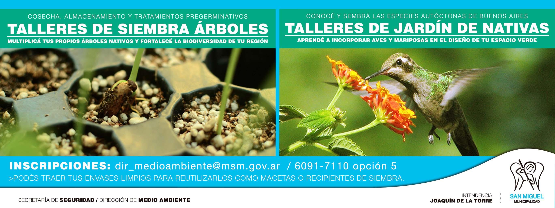 TALLERES DE NATIVAS BAJA