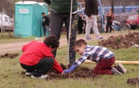 Grandes y chicos colaboraron en la plantacion de las nativas