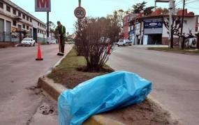 limpiando el boulevard