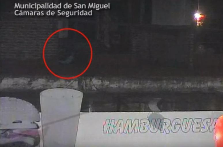 Gracias a las cámaras de seguridad detuvieron a un ladrón escondido en el techo de un local comercial