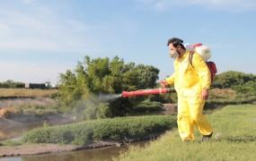 La Municipalidad de San Miguel continúa con su campaña de prevención por el dengue