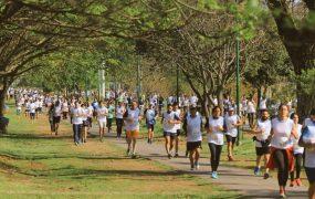 la-maraton-desde-el-corredor-aerobico