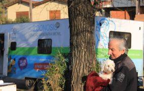 Duplicamos los operativos de zoonosis